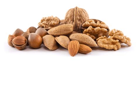Almonds, Walnuts, Brazilian Nuts, Pistachios, Cashews, Pine Nuts, Macadamia Nuts, Hazelnuts…